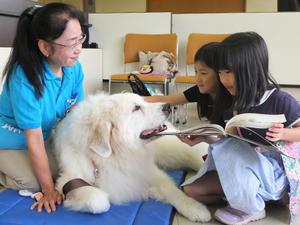 三鷹図書館(東京)、読書介助犬招き読み聞かせ体験
